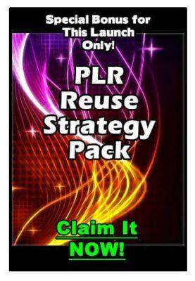 PLR Reuse Power Strategy Pack